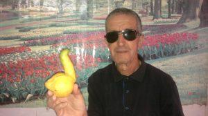 citron-masdjid-errahmane-cherchell2