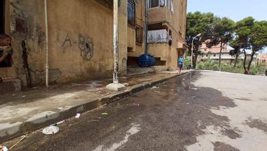 Photo of سيال مطالبة بالتدخل لإصلاحه : تسرب يومي للمياه أمام مدخل عمارة حي الشهيد دريس بوعلام بالحامدية بالداموس