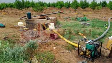 Photo of ضبط فلاحين متلبسين بسقي المحاصيل الزراعية بمياه الصرف  الصحي في أحمر العين